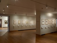 Special Exhibitions - Gallery 59