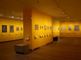 Special Exhibitions Gallery 3 - Visions of Mughal India exhibition. © Ashmolean Museum, University of Oxford