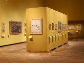 Special Exhibitions Gallery 4 - Visions of Mughal India exhibition. © Ashmolean Museum, University of Oxford