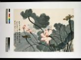 Lotus (EA1995.278)