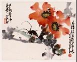 Kapok flower