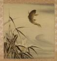 Leaping carp