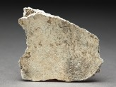 Oracle bone (EAX.510)