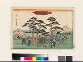 Cherry Trees in Full Bloom at Mount Asuka (EAX.4704)