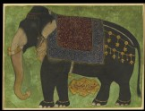 The elephant Khushi Khan (LI118.58)