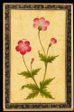 Pink composite flower with leaves (LI118.72)