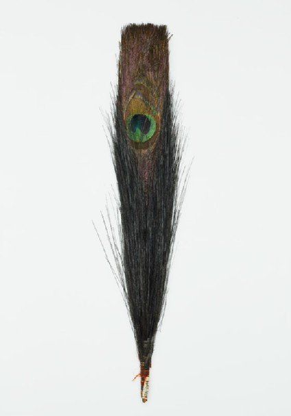Peacock feather probably used to denote official ranktop