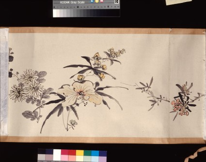 Flowering plants of the four seasonsdetail