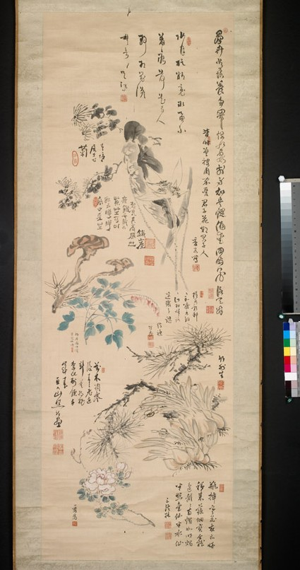 Flowers, plants, and calligraphyfront