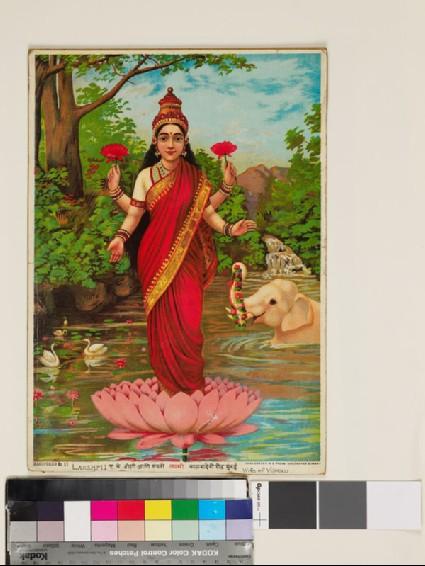 Lakshmi Ifront