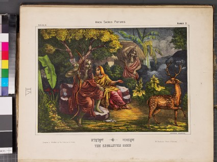 Maya-mriga, the magical deerfront