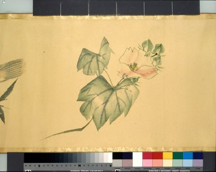 Camellia and lobsterdetail