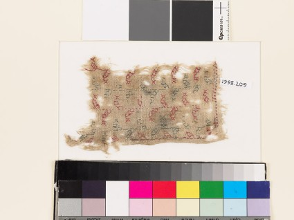 Textile fragment with stems and stylized leavesfront