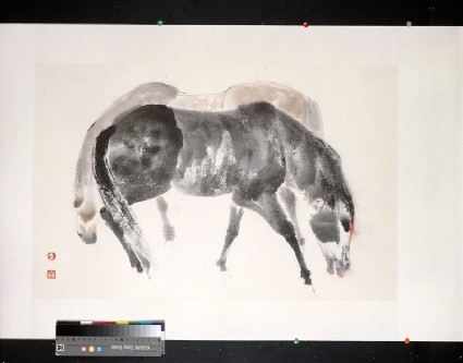 Black Horse, Yellow Horsefront