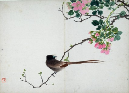 Bird sitting on a branch with pink flowersfront