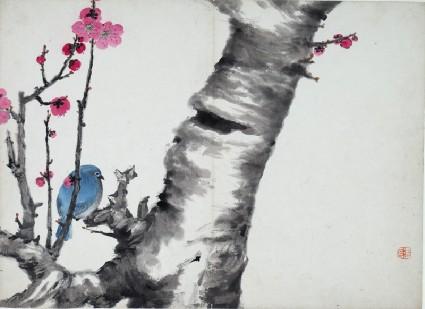 Blue bird sitting on a plum blossom treefront