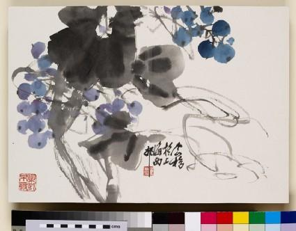 Blueberriesfront