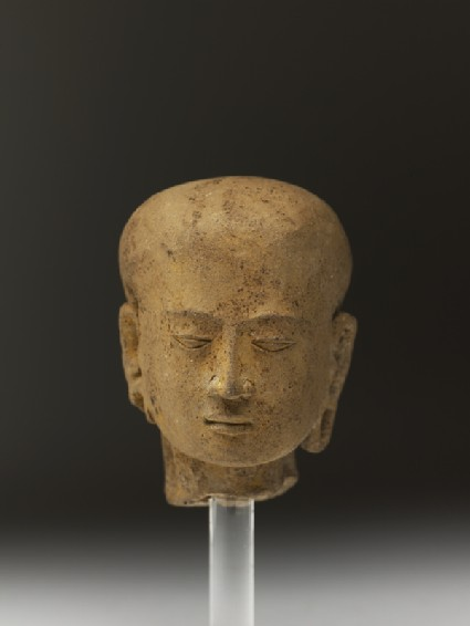 Head of a young womanfront