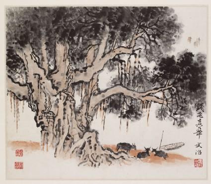 Oxen beneath a treefront