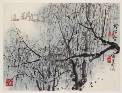 Willows at Lake Taifront