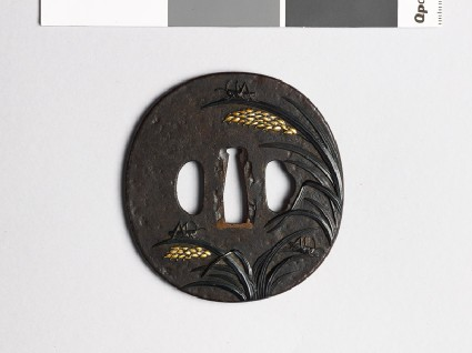 Tsuba with rice plants and grasshoppersfront