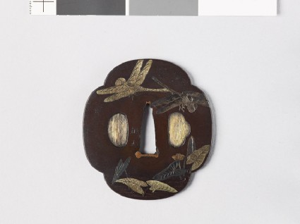 Mokkō-shaped tsuba with dragonflies over a pondfront