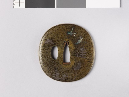 Lenticular tsuba with Platycodon plants, butterflies, and dragonfliesfront