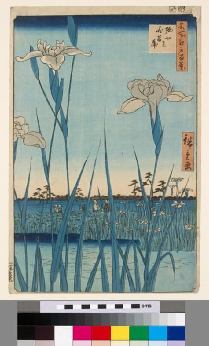 Horikiri Iris Gardenfront