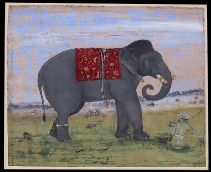 Elephant and keeperfront