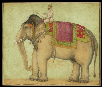 Royal elephant with mahoutfront