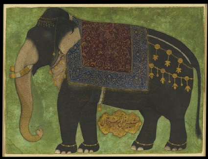 The elephant Khushi Khanfront