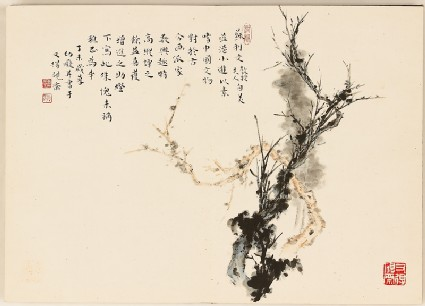 Tree branches and calligraphyfront