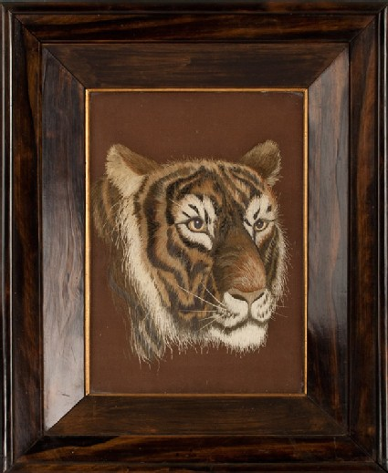 Head of a tigerfront, Cat. No. 33